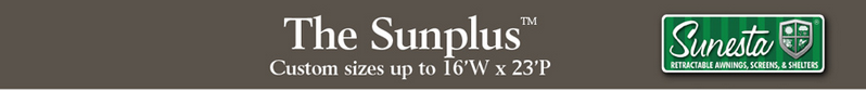 The Sunplus information 1